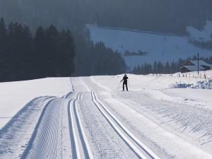 cross-country-skiing-113018_640